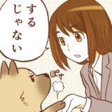 【マンガ】無色透明(2)